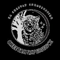 cheetahexperience